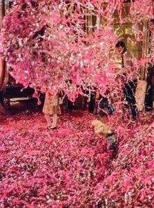 бумажное розовое шоу
